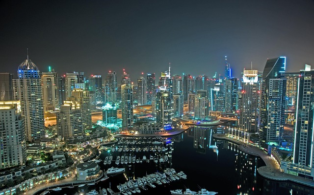 Industry Overview – Dubai HealthCare